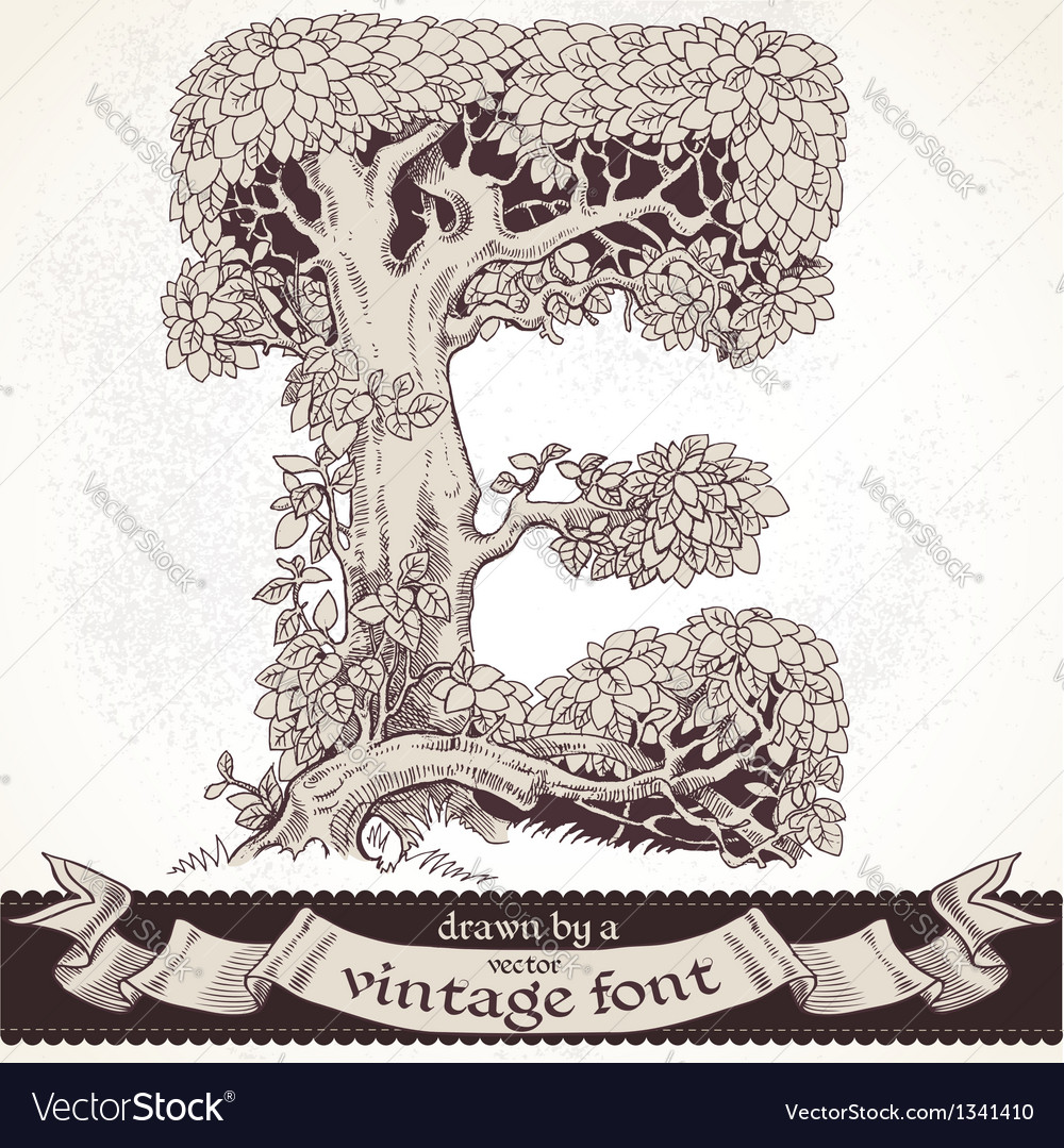 Fable forest hand drawn by a vintage font - e vector | Price: 1 Credit (USD $1)