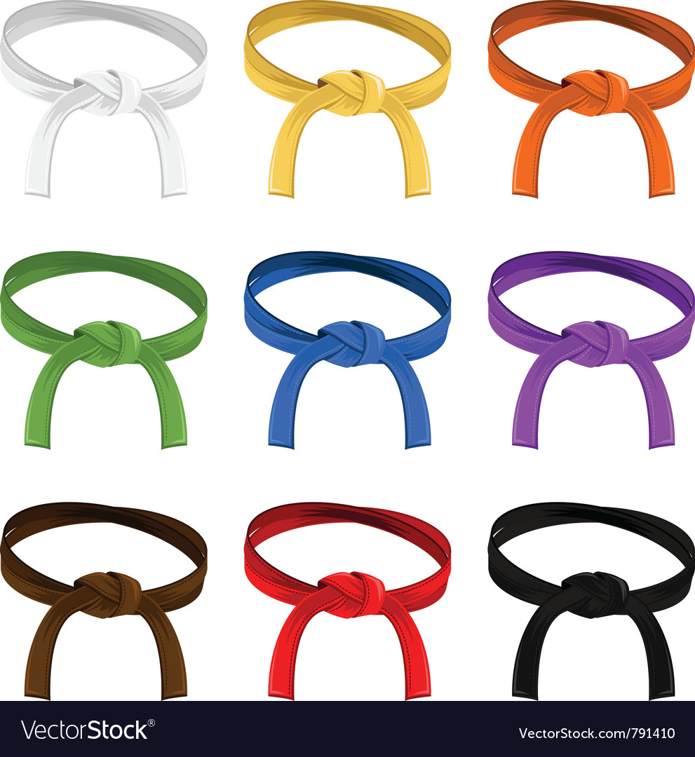 Martial art belt rank system vector | Price: 1 Credit (USD $1)