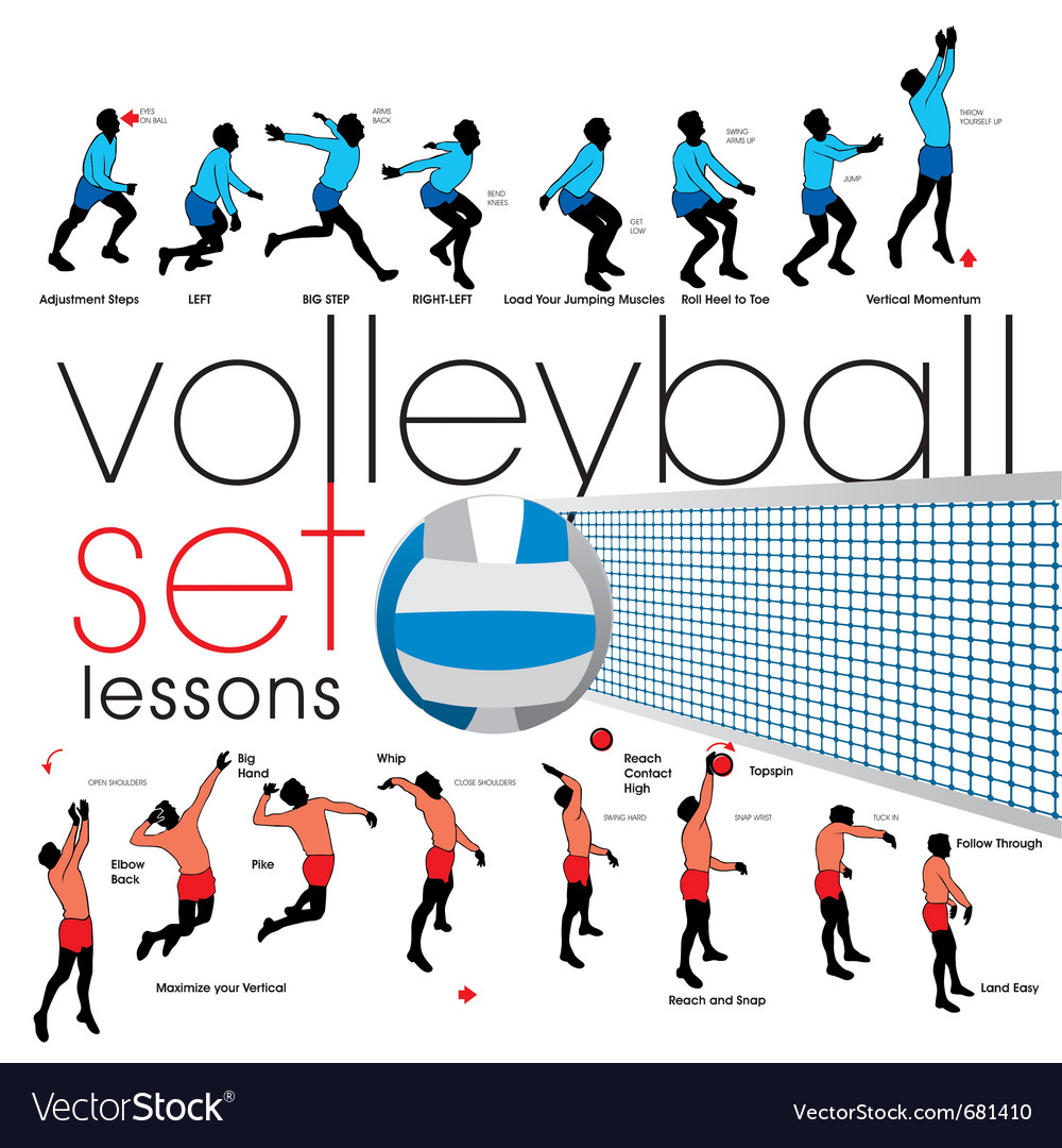 Volleyball lessons set vector | Price: 1 Credit (USD $1)