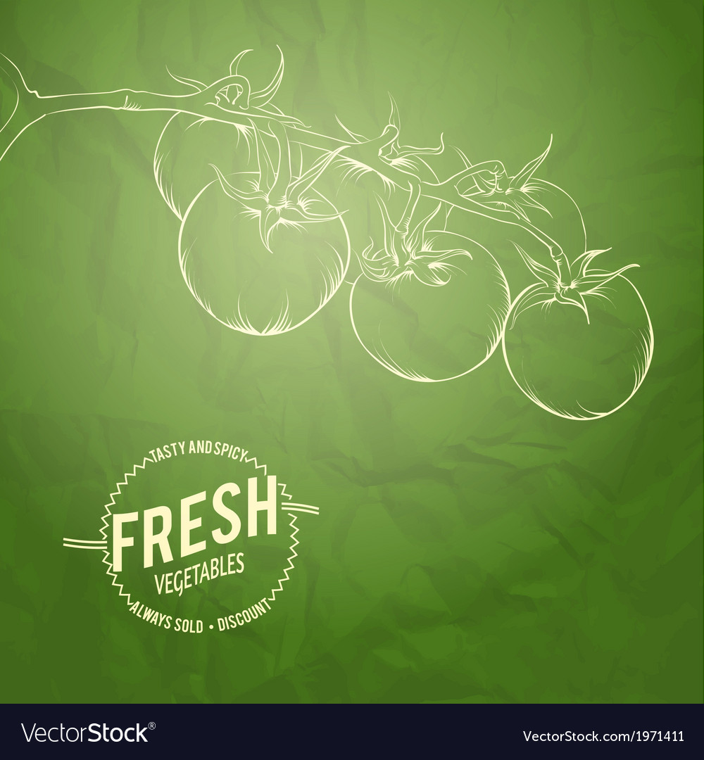 Culinary cover background vector | Price: 1 Credit (USD $1)