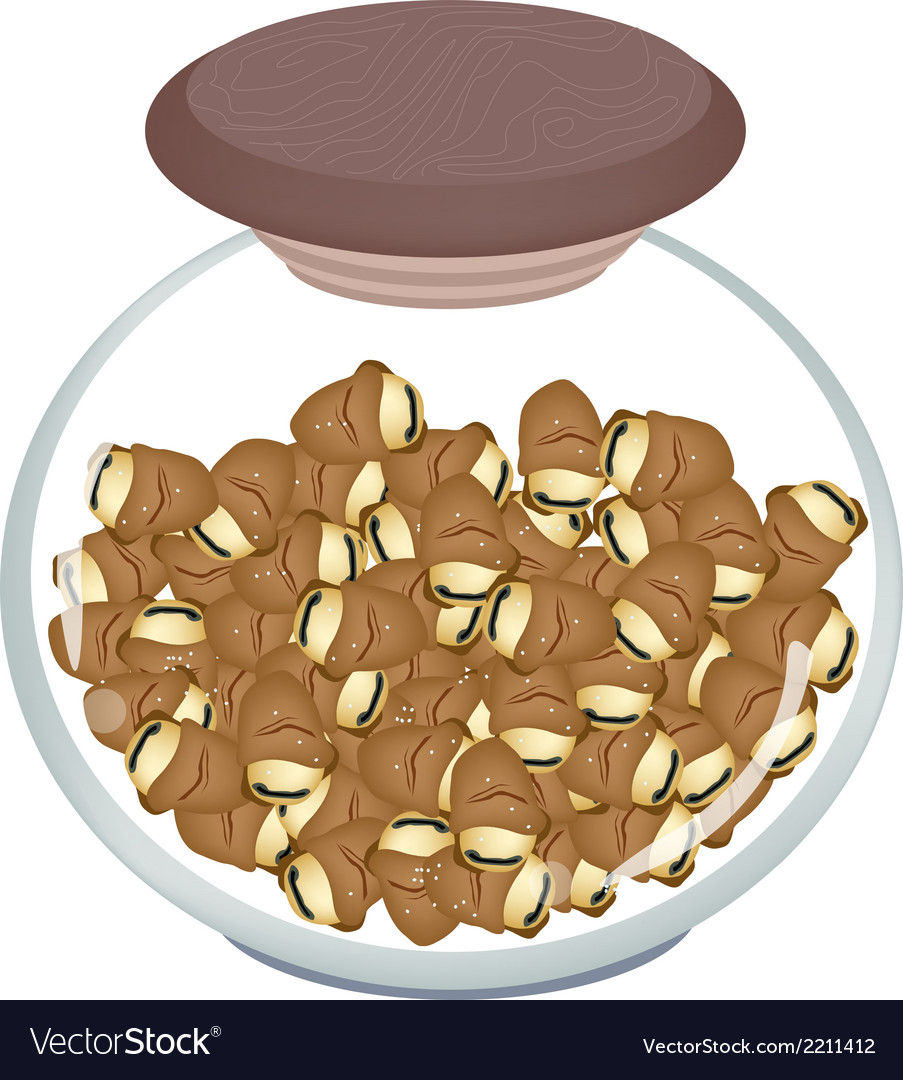 A jar of dried broad beans or fava beans vector | Price: 1 Credit (USD $1)