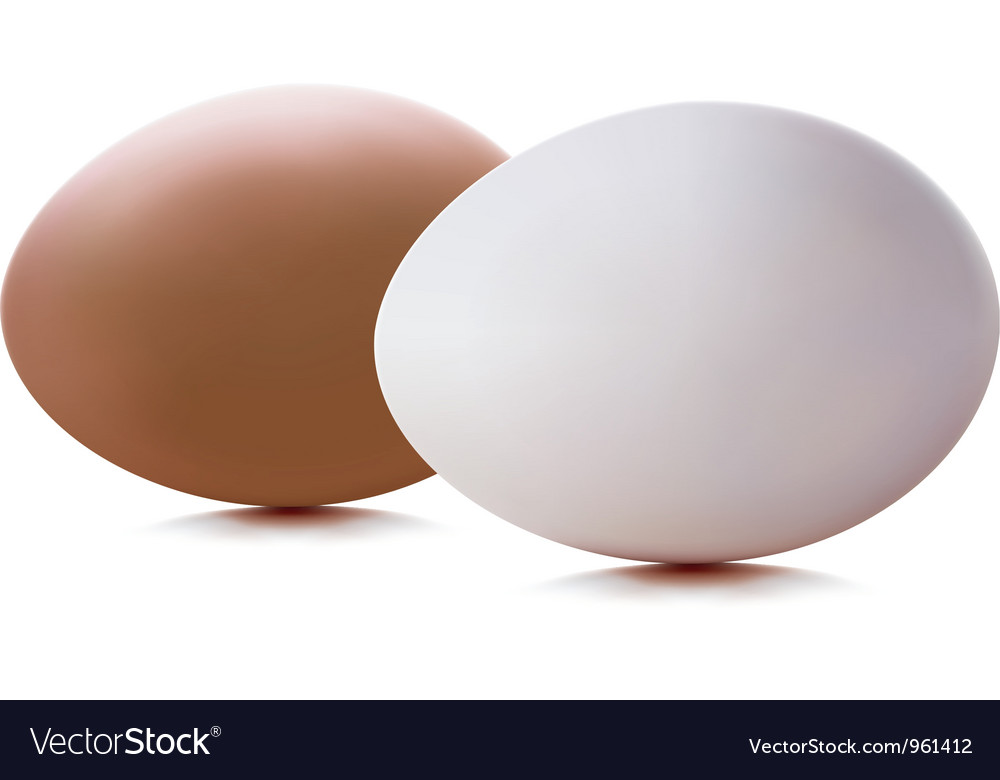 Egg vector | Price: 1 Credit (USD $1)