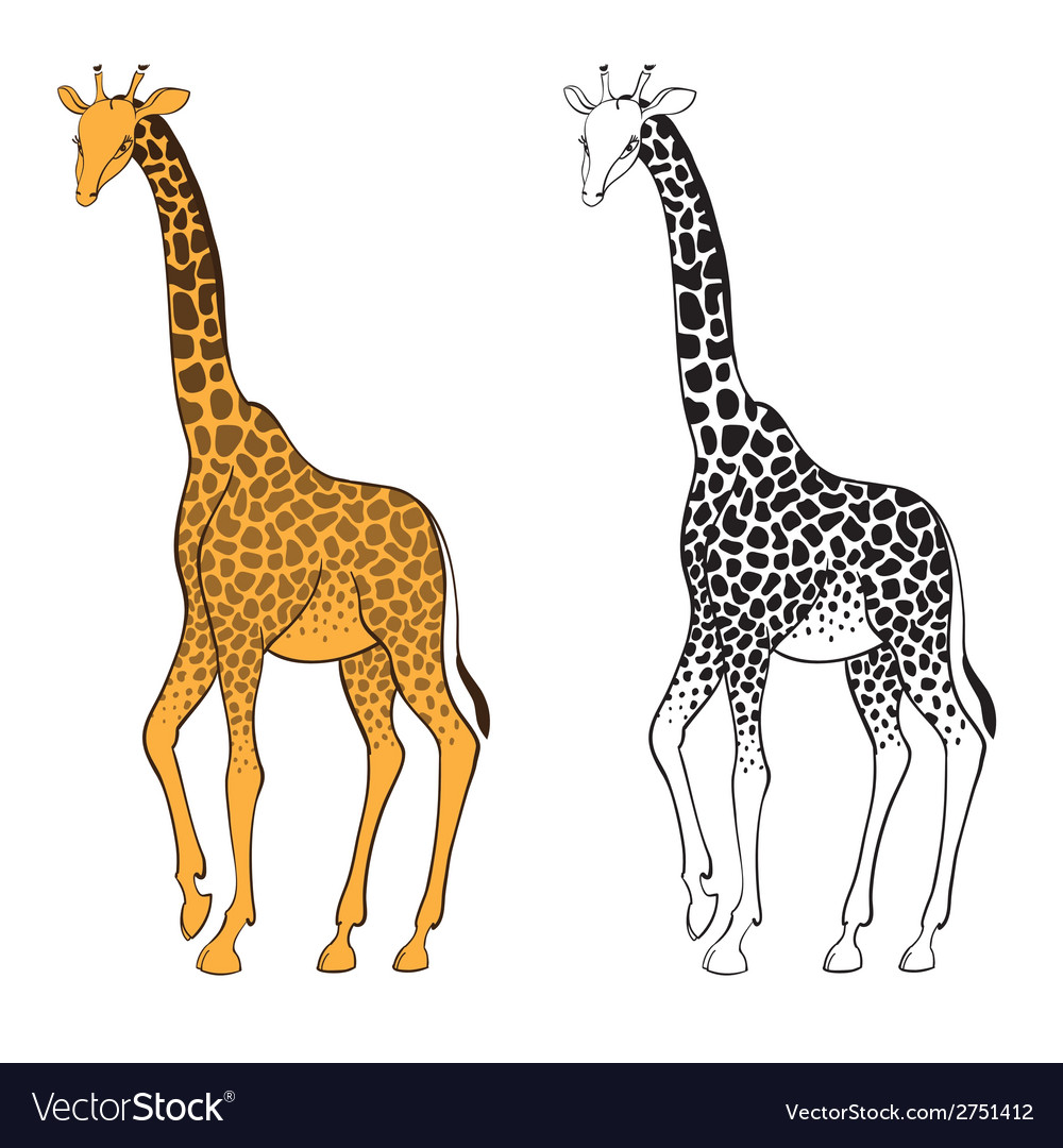 Set of two giraffes wall stickers vector | Price: 1 Credit (USD $1)