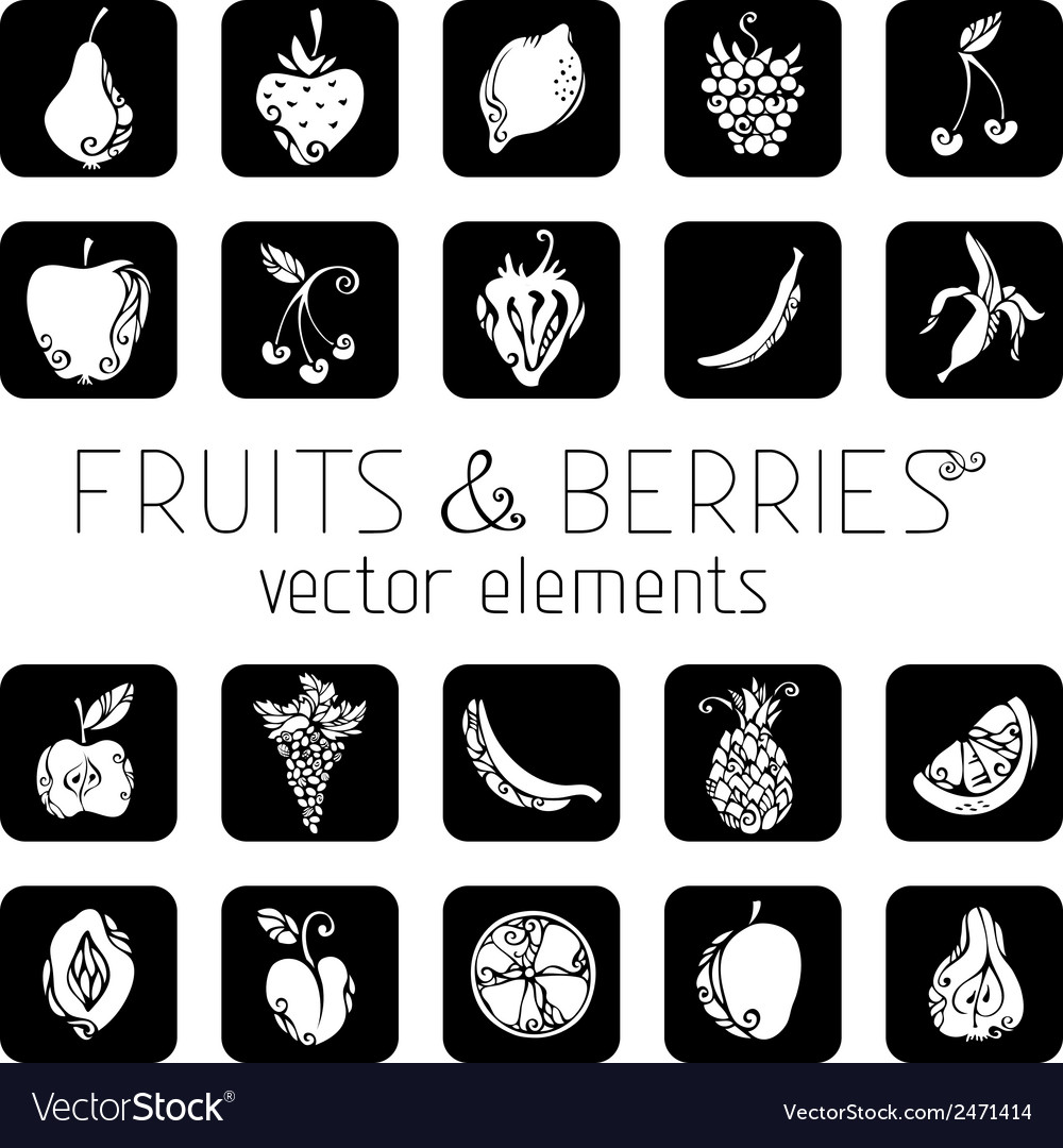 Set of square icons with fruits and berries vector | Price: 1 Credit (USD $1)