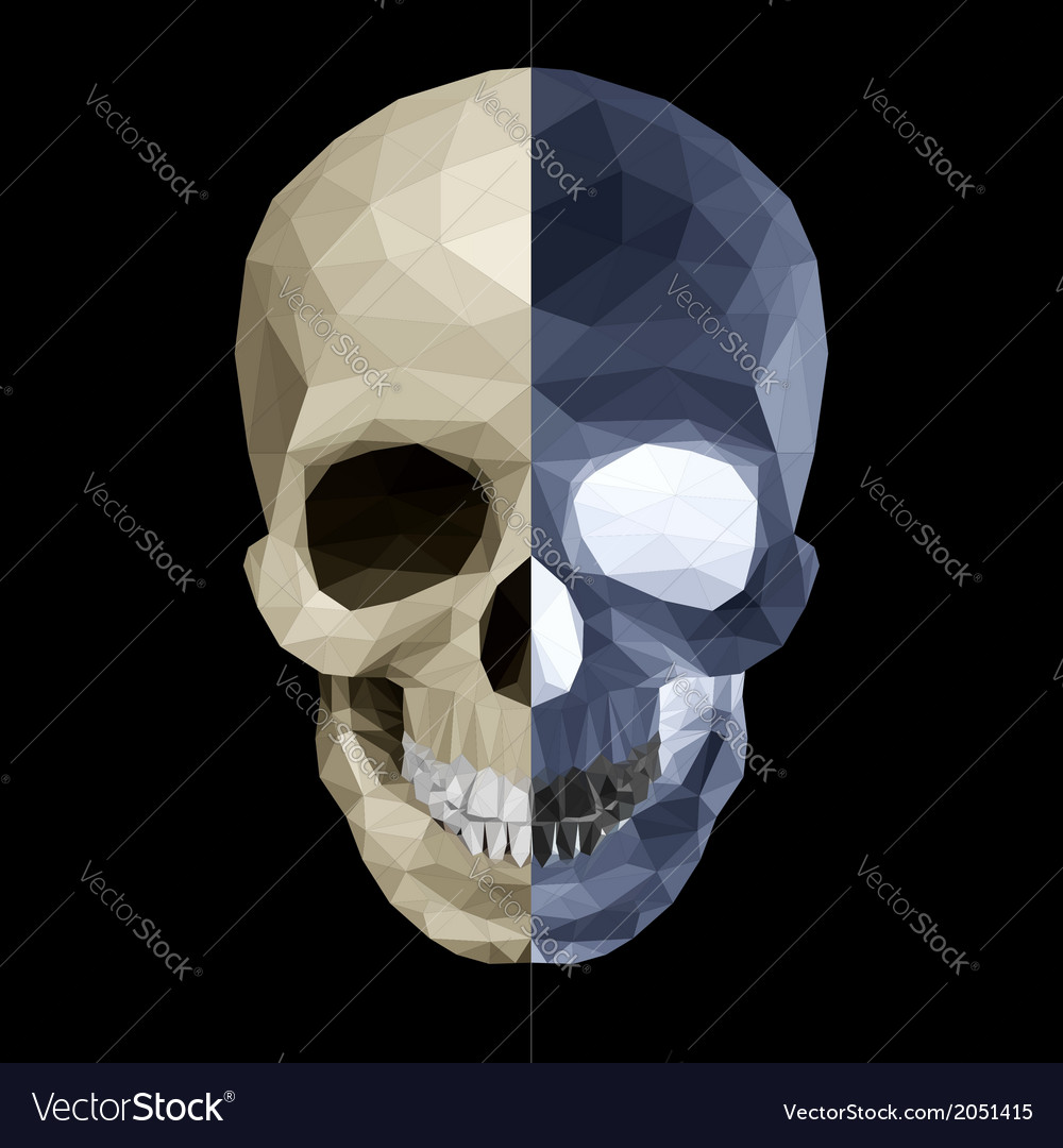 Crystal skull in two colors vector | Price: 1 Credit (USD $1)