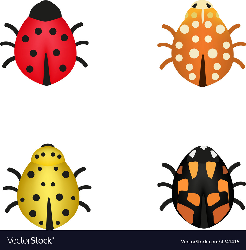 Set of four ladybugs in different colors vector