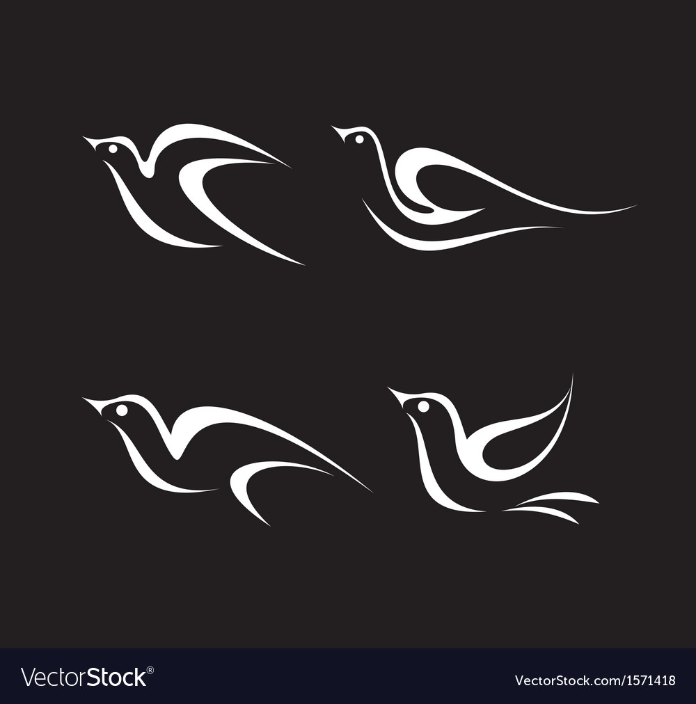 Bird mirror vector | Price: 1 Credit (USD $1)