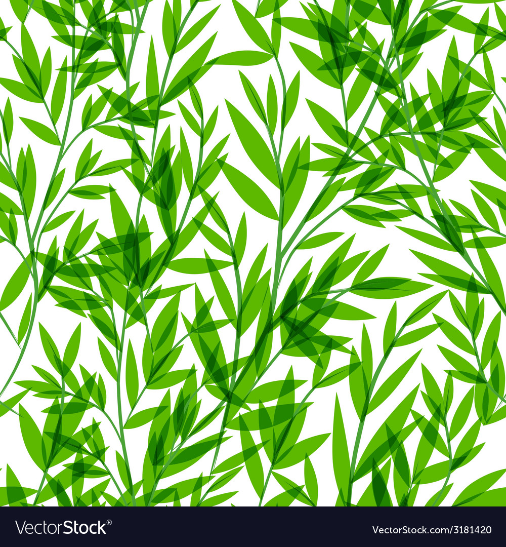 Bamboo seamless pattern for your business vector | Price: 1 Credit (USD $1)