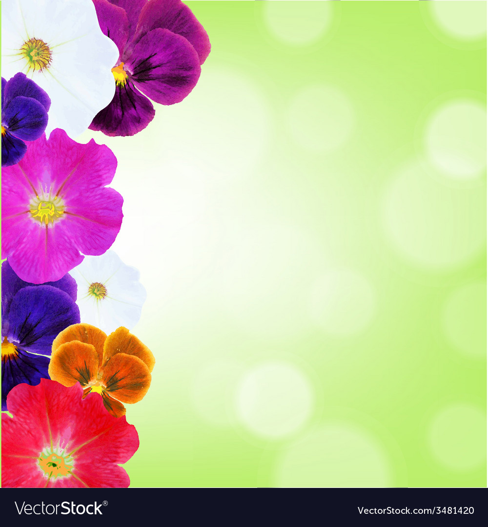 Flower border with bokeh vector | Price: 1 Credit (USD $1)