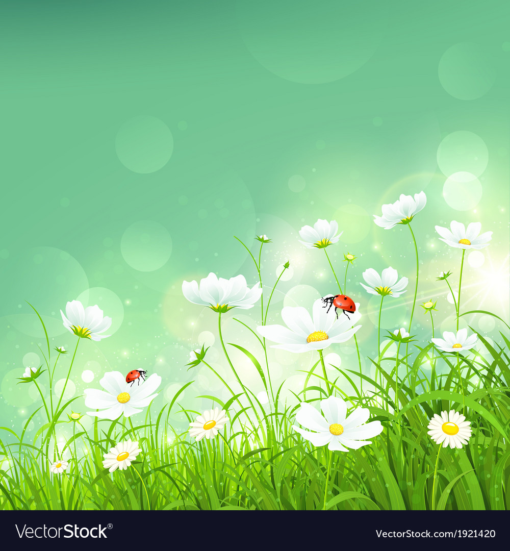 Natural background with flowers vector | Price: 1 Credit (USD $1)