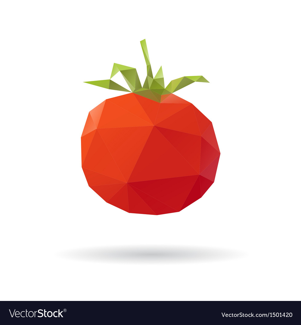 Tomato abstract isolated on a white vector | Price: 1 Credit (USD $1)