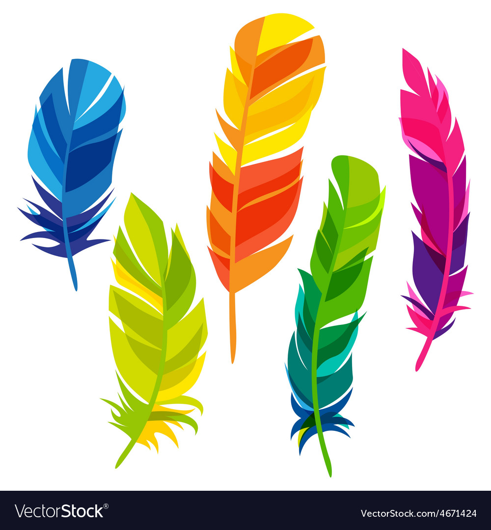 Set of abstract bright transparent feathers on vector | Price: 1 Credit (USD $1)
