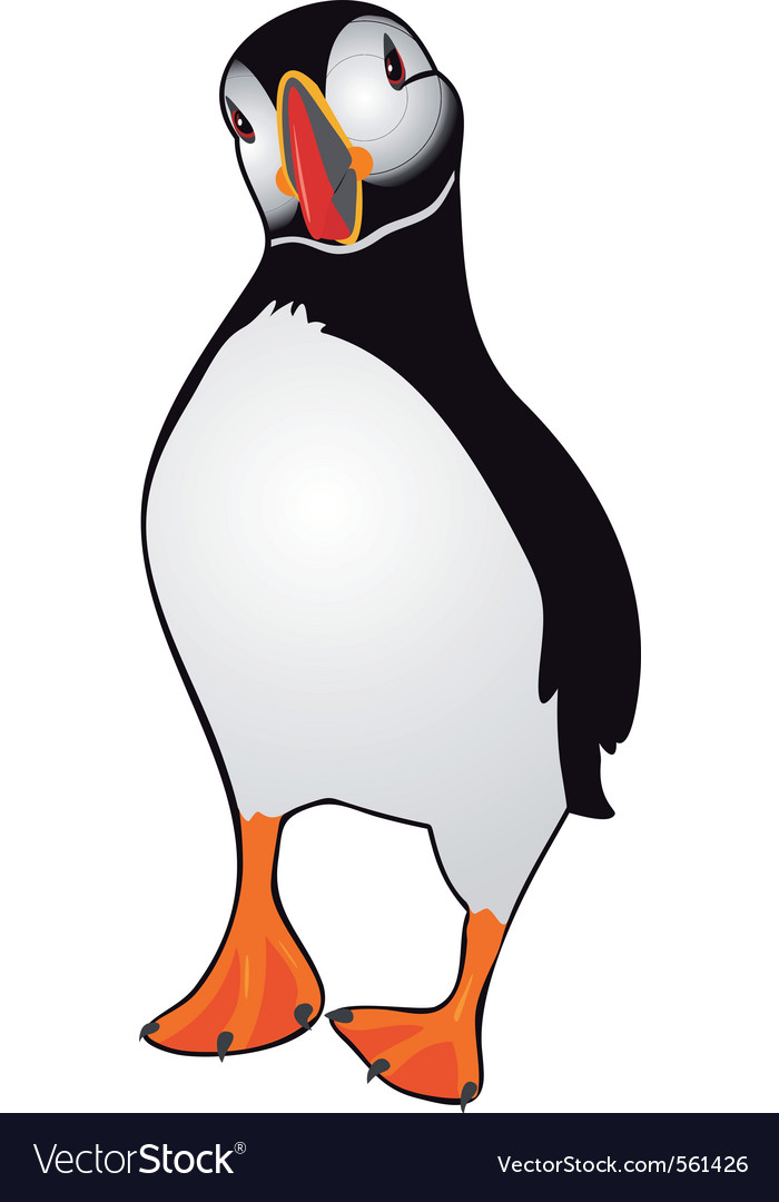 Atlantic puffin vector | Price: 1 Credit (USD $1)