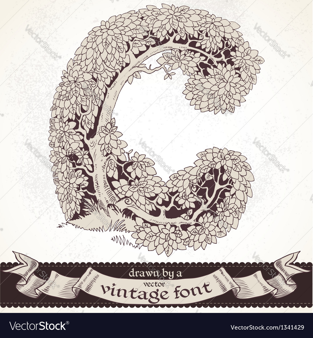 Fable forest hand drawn by a vintage font - c vector | Price: 1 Credit (USD $1)