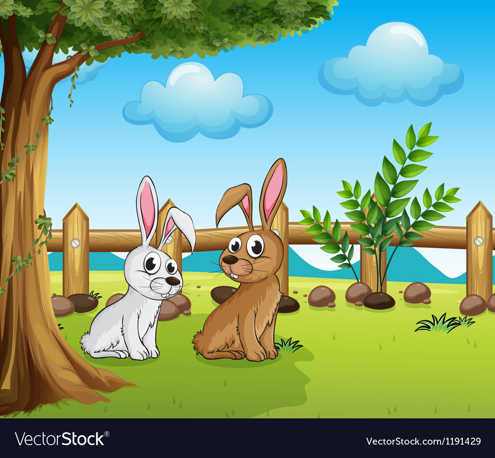 Two bunnies inside the fence vector | Price: 1 Credit (USD $1)