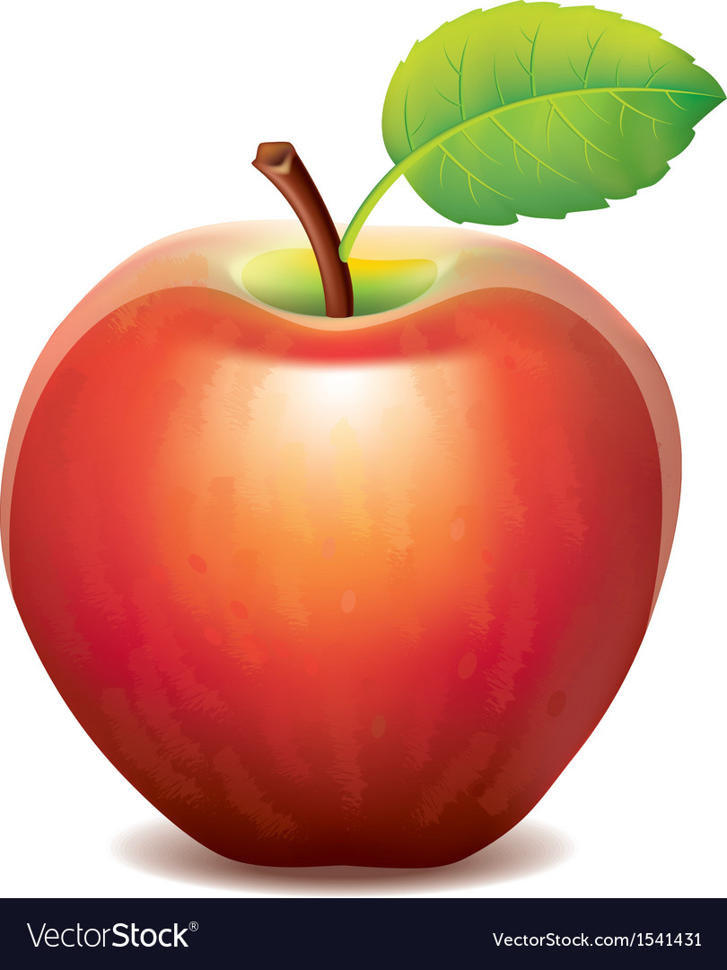One red apple vector | Price: 1 Credit (USD $1)