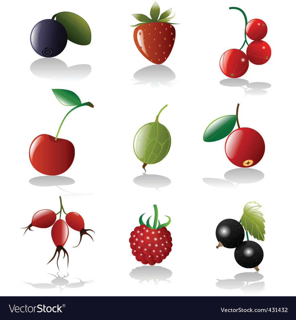 Berries icon set vector | Price: 1 Credit (USD $1)