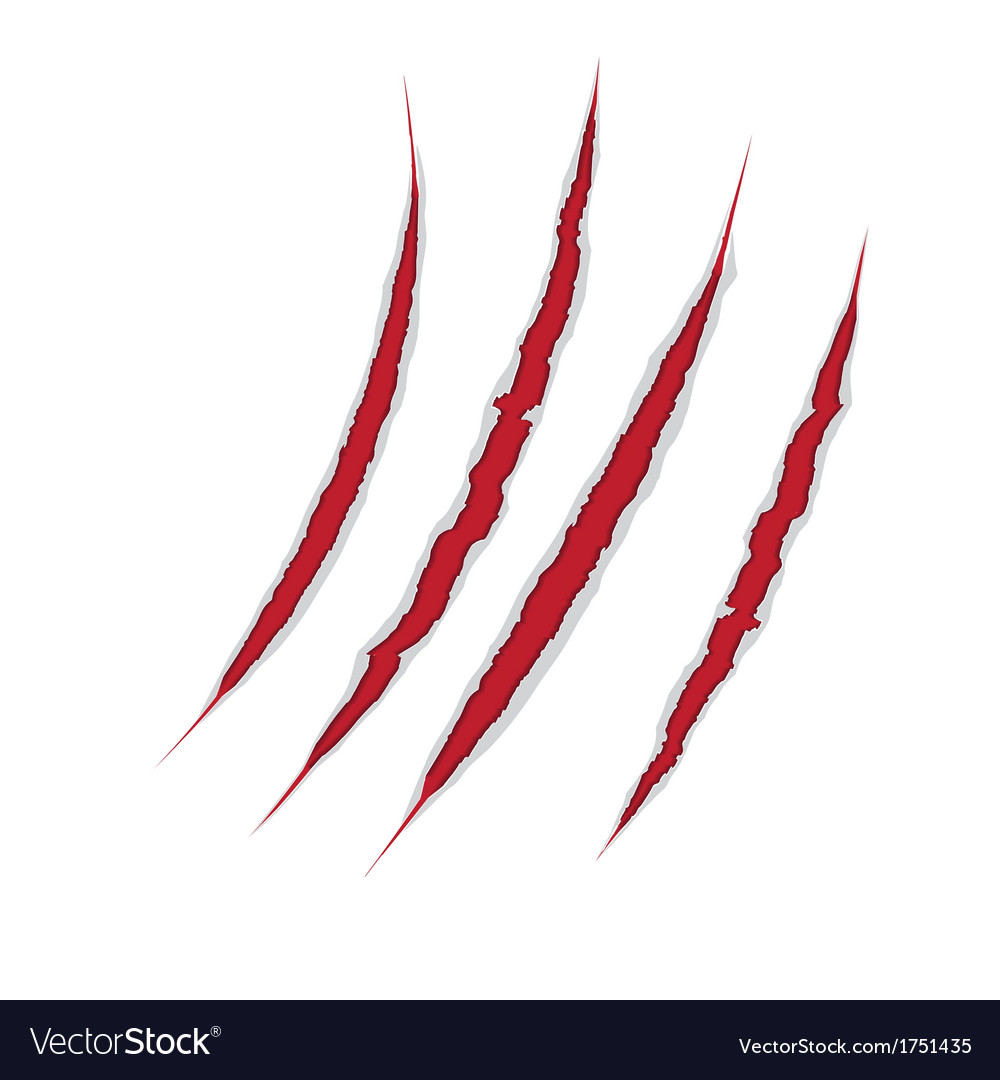 Claws scratch on paper background damage vector | Price: 1 Credit (USD $1)