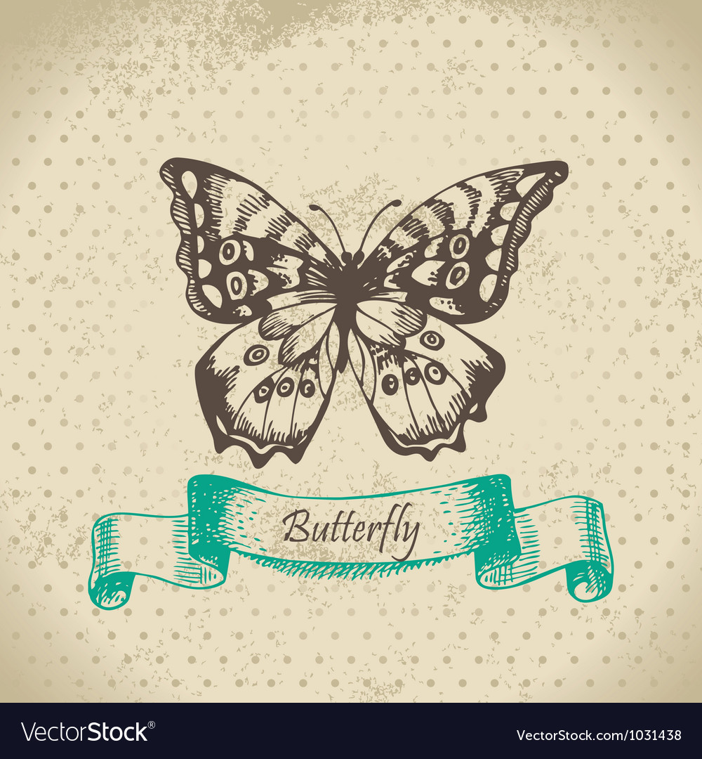 Butterfly hand drawn vector | Price: 1 Credit (USD $1)