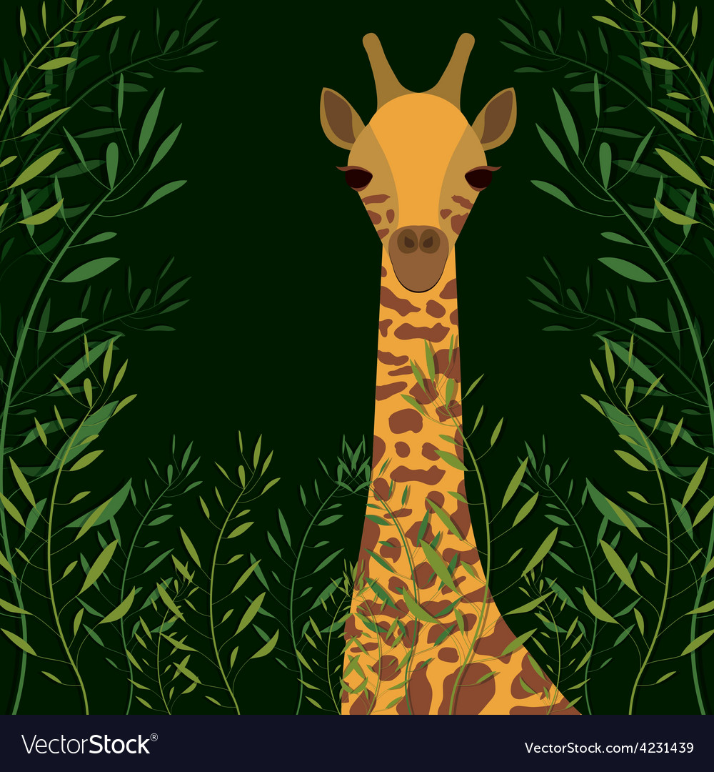 Jungle design vector | Price: 1 Credit (USD $1)