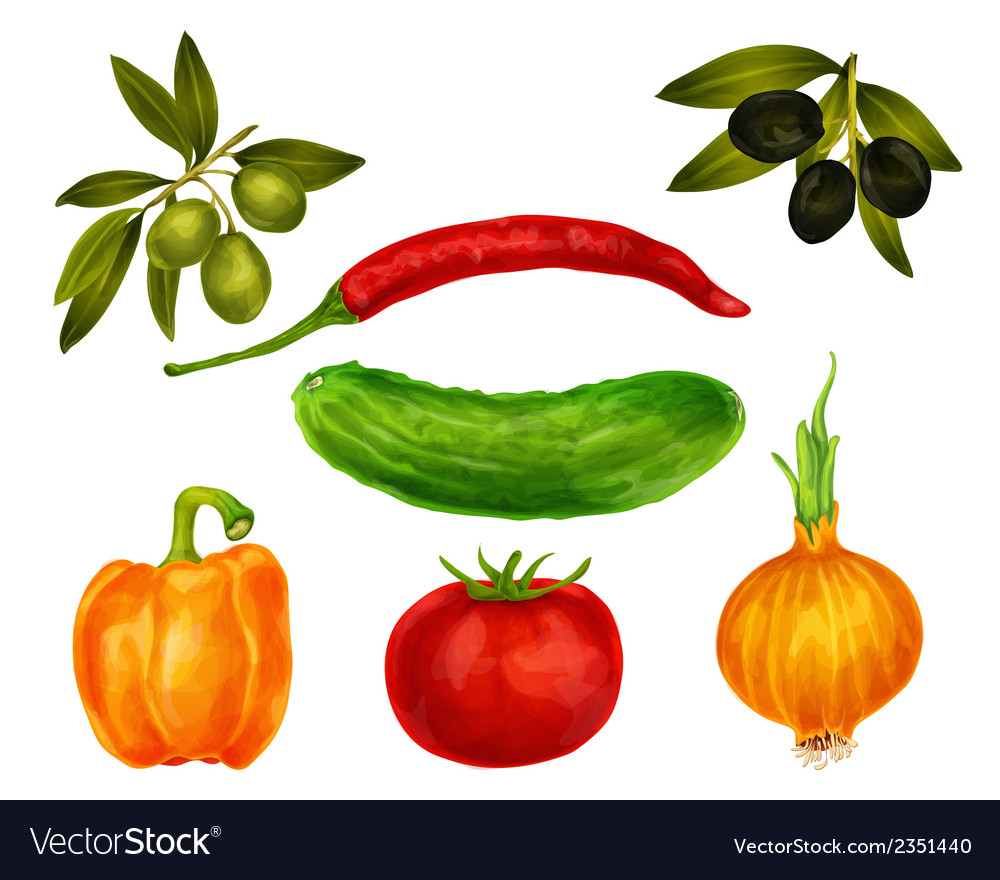 Vegetables isolated set vector | Price: 1 Credit (USD $1)