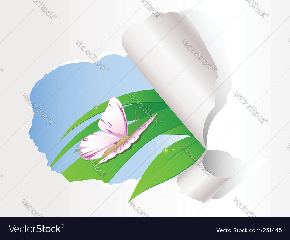 Butterfly sitting on green grass vector | Price: 1 Credit (USD $1)