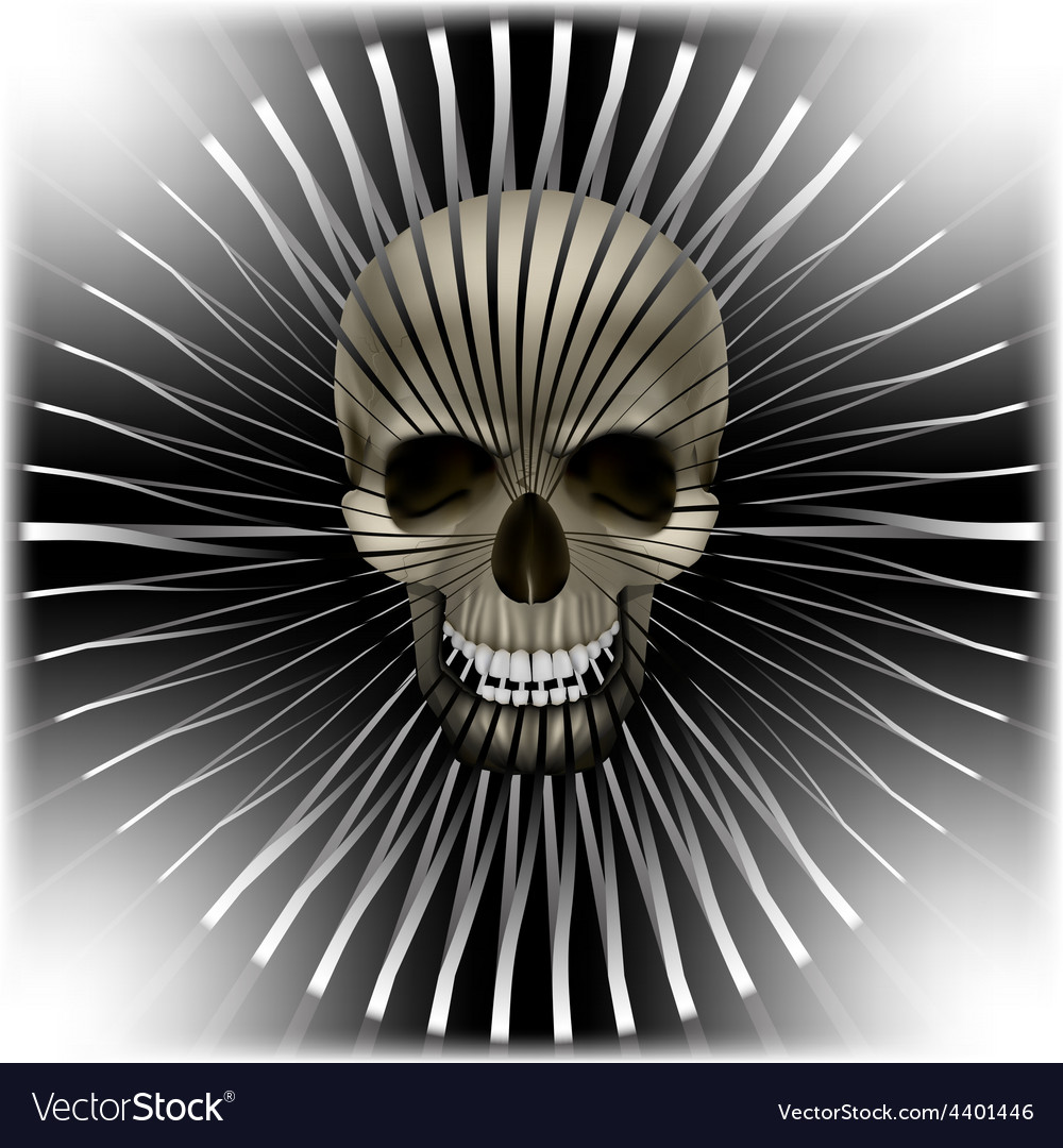 Background with skull and circular volume texture vector | Price: 1 Credit (USD $1)