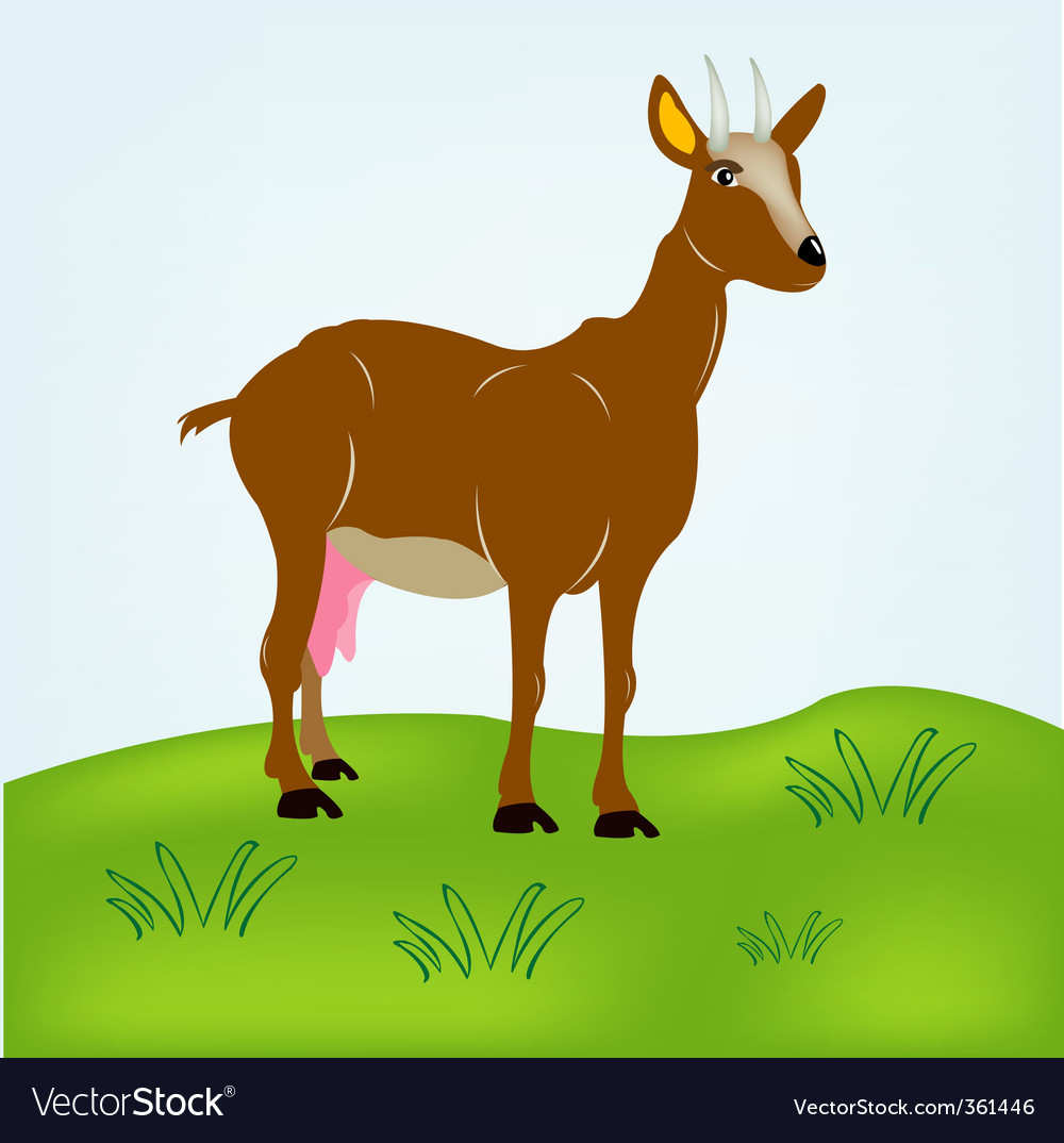 Nanny goats vector | Price: 1 Credit (USD $1)