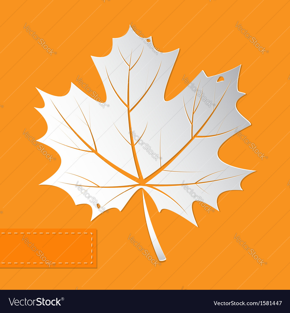 Maple leaf orange background vector | Price: 1 Credit (USD $1)