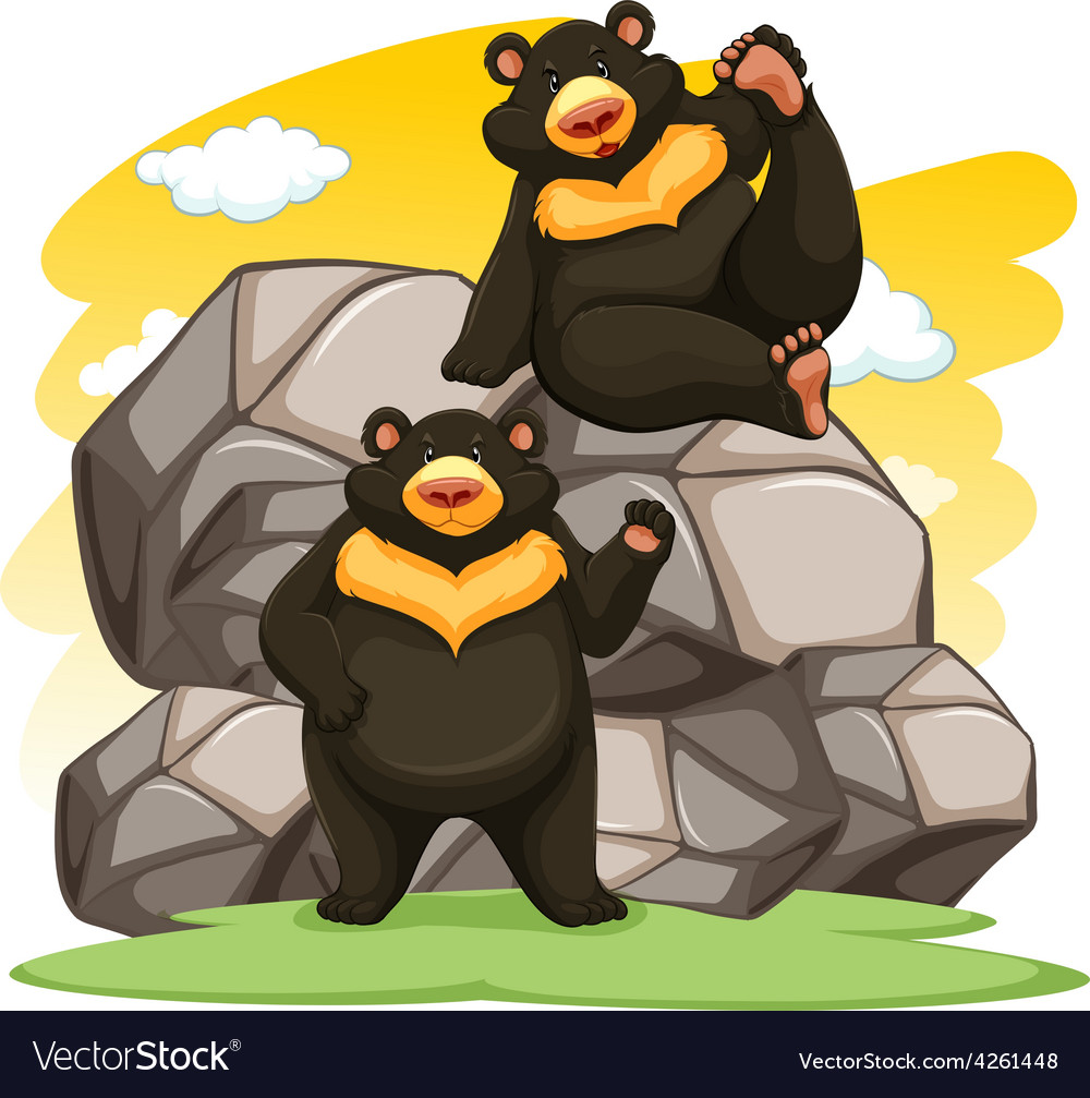 Two playful bears vector | Price: 1 Credit (USD $1)