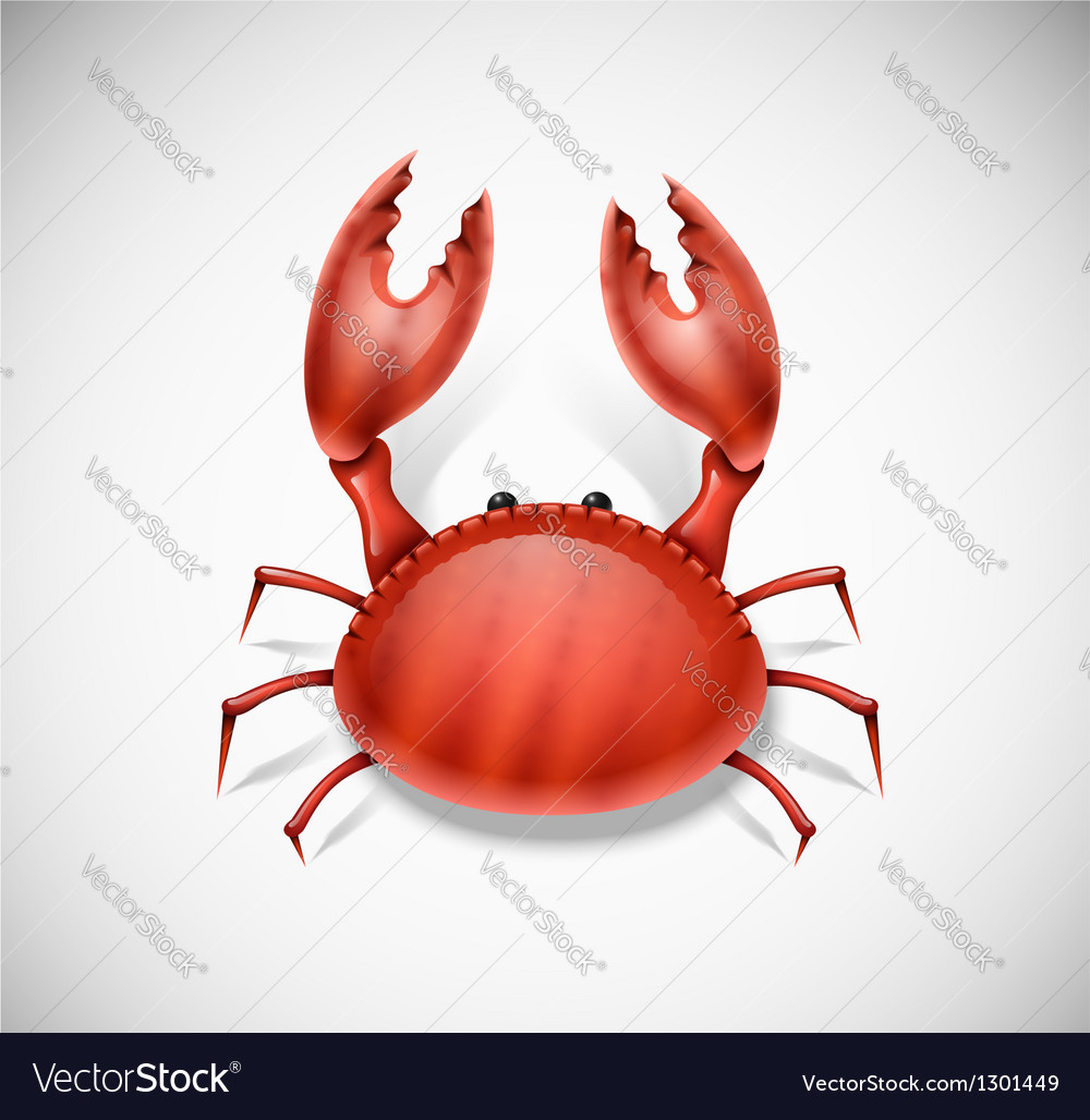 Isolated crab vector | Price: 3 Credit (USD $3)