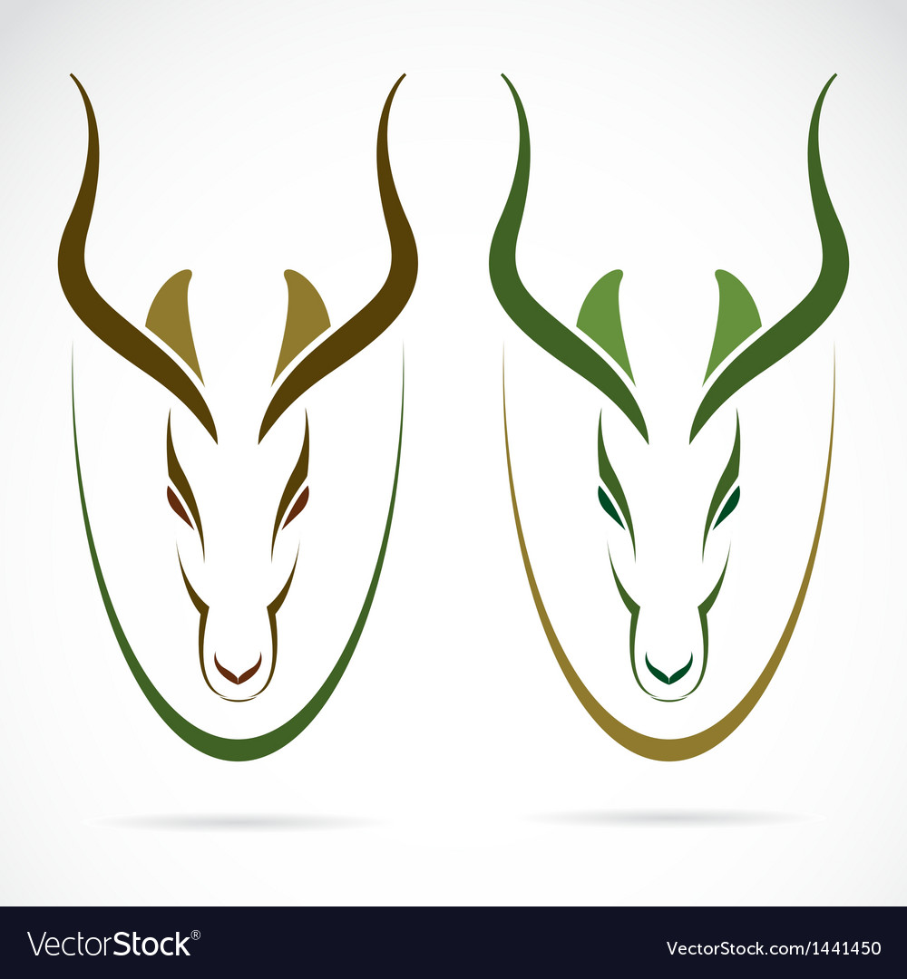 Image of an head impala vector | Price: 1 Credit (USD $1)