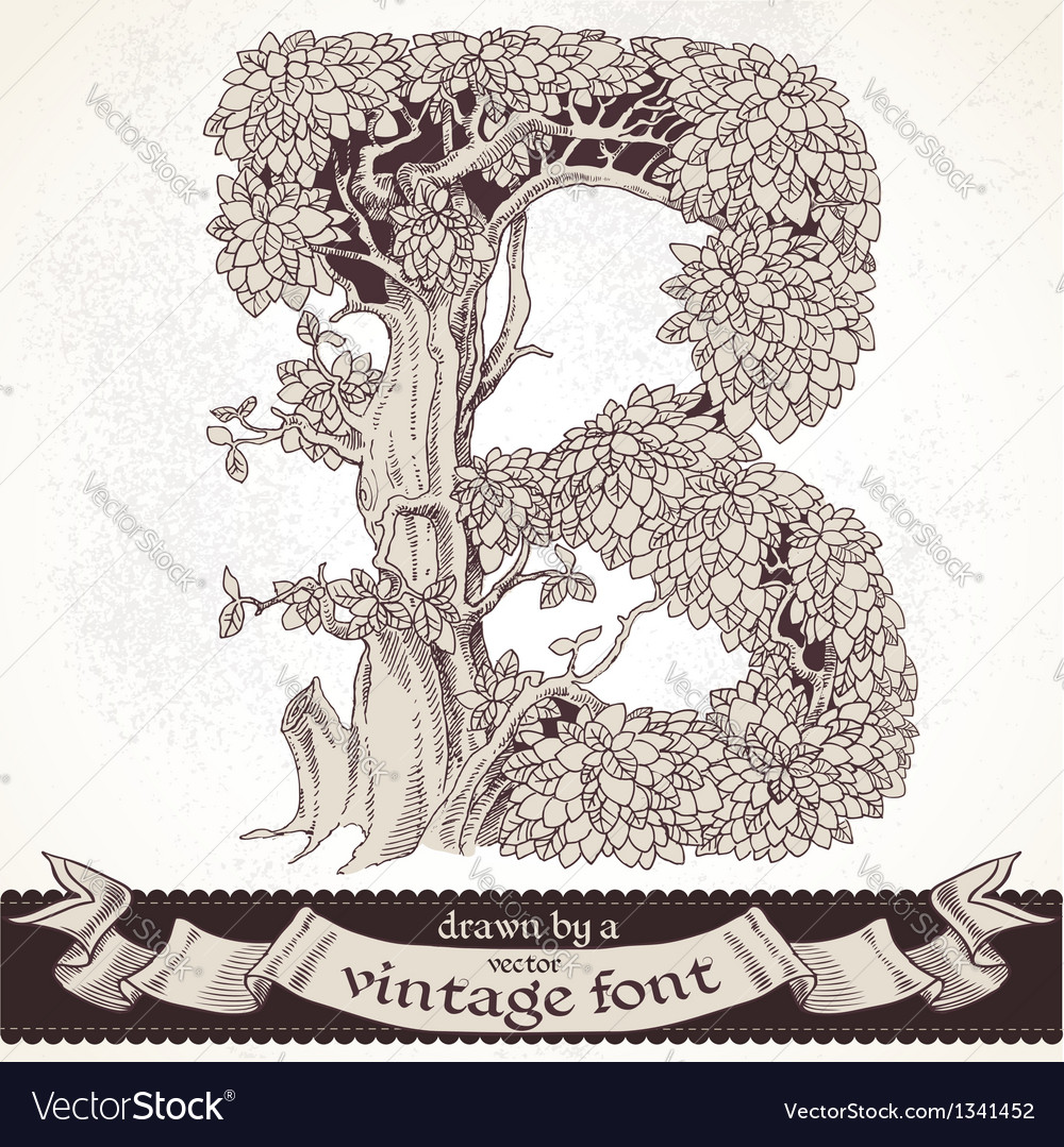 Fable forest hand drawn by a vintage font - b vector | Price: 1 Credit (USD $1)