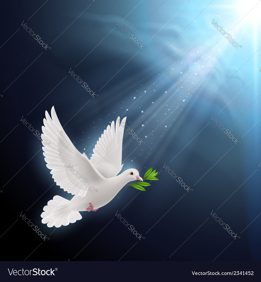 Fly dove vector   Price: 1 Credit (USD $1)