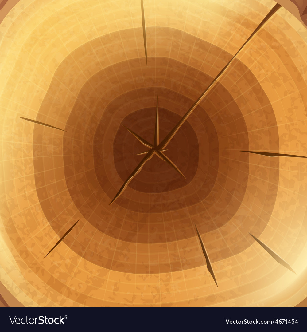 Wood cross section background wallpaper vector | Price: 1 Credit (USD $1)