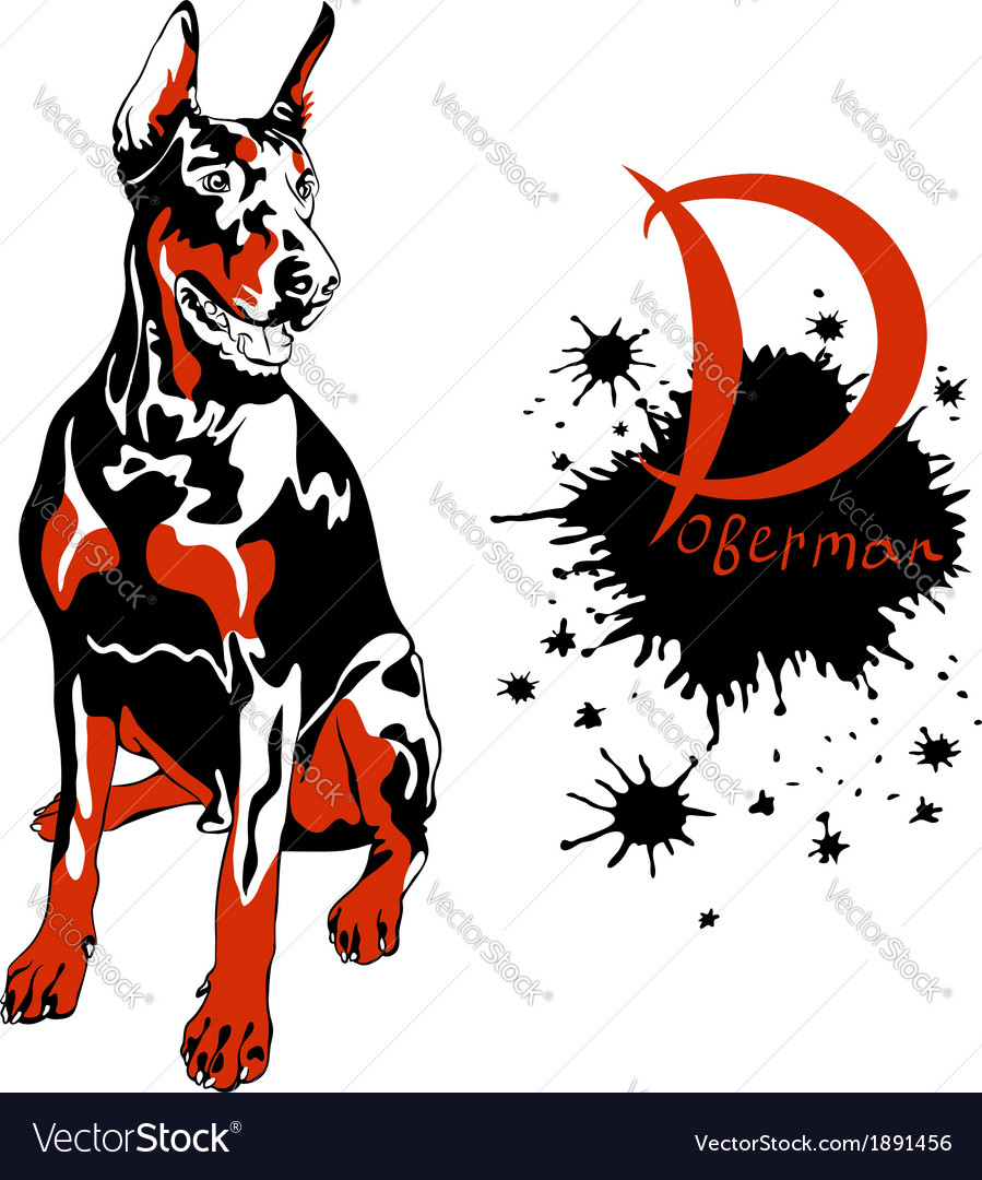 Dog doberman pinscher breed sitting vector | Price: 1 Credit (USD $1)