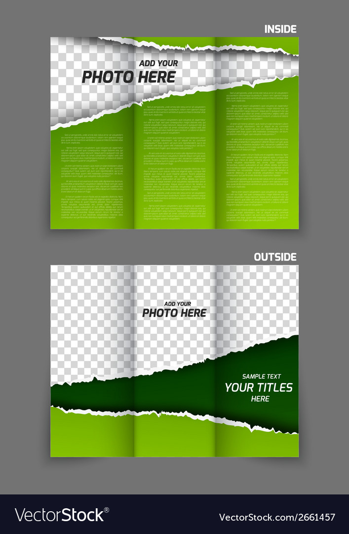 Torn paper tri fold brochure vector | Price: 1 Credit (USD $1)