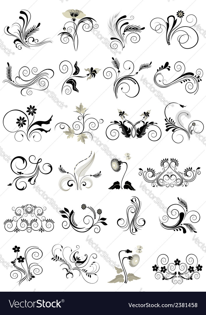 Collection flourishes patterns for design vector | Price: 1 Credit (USD $1)