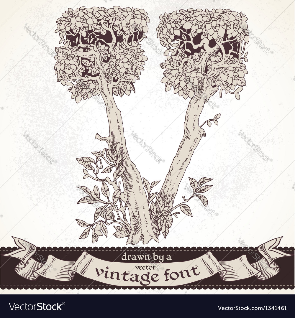 Fable forest hand drawn by a vintage font - v vector | Price: 1 Credit (USD $1)