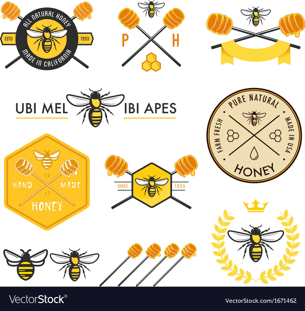 Set of honey labels badges and design elements vector | Price: 1 Credit (USD $1)