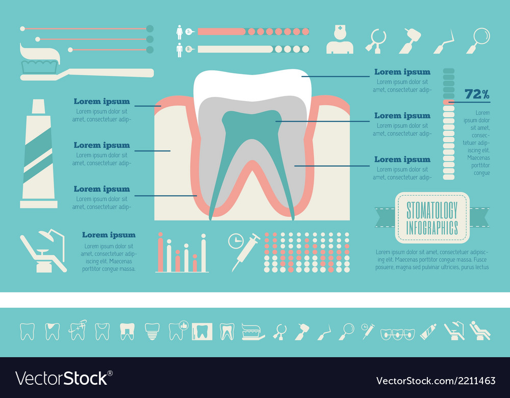 Dental infographic template vector   Price: 1 Credit (USD $1)