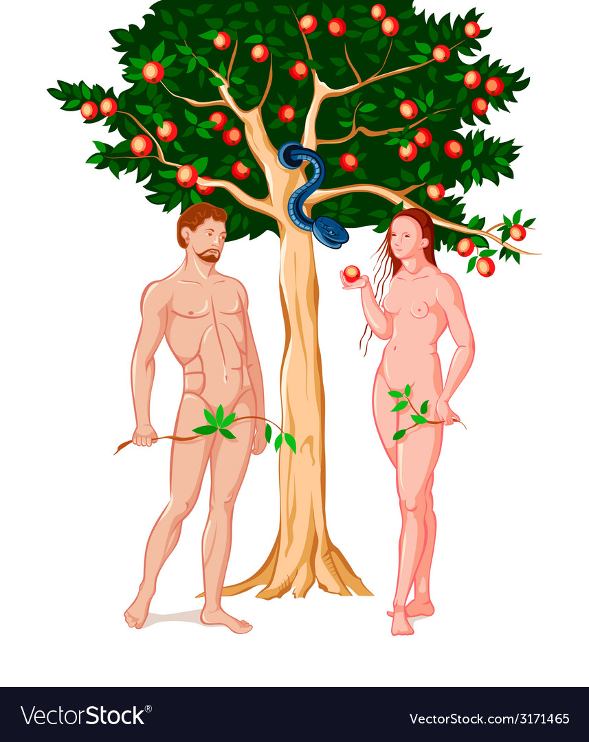Adam and eve vector | Price: 3 Credit (USD $3)
