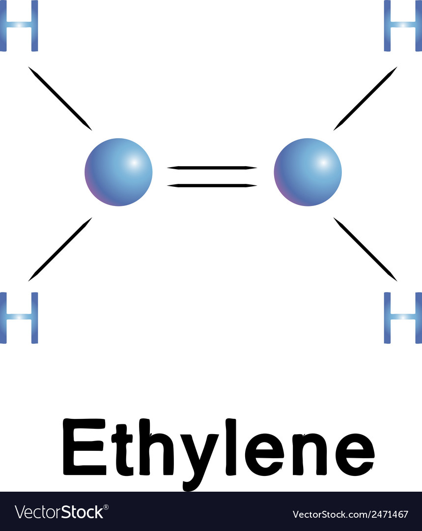 Ethylene vector | Price: 1 Credit (USD $1)
