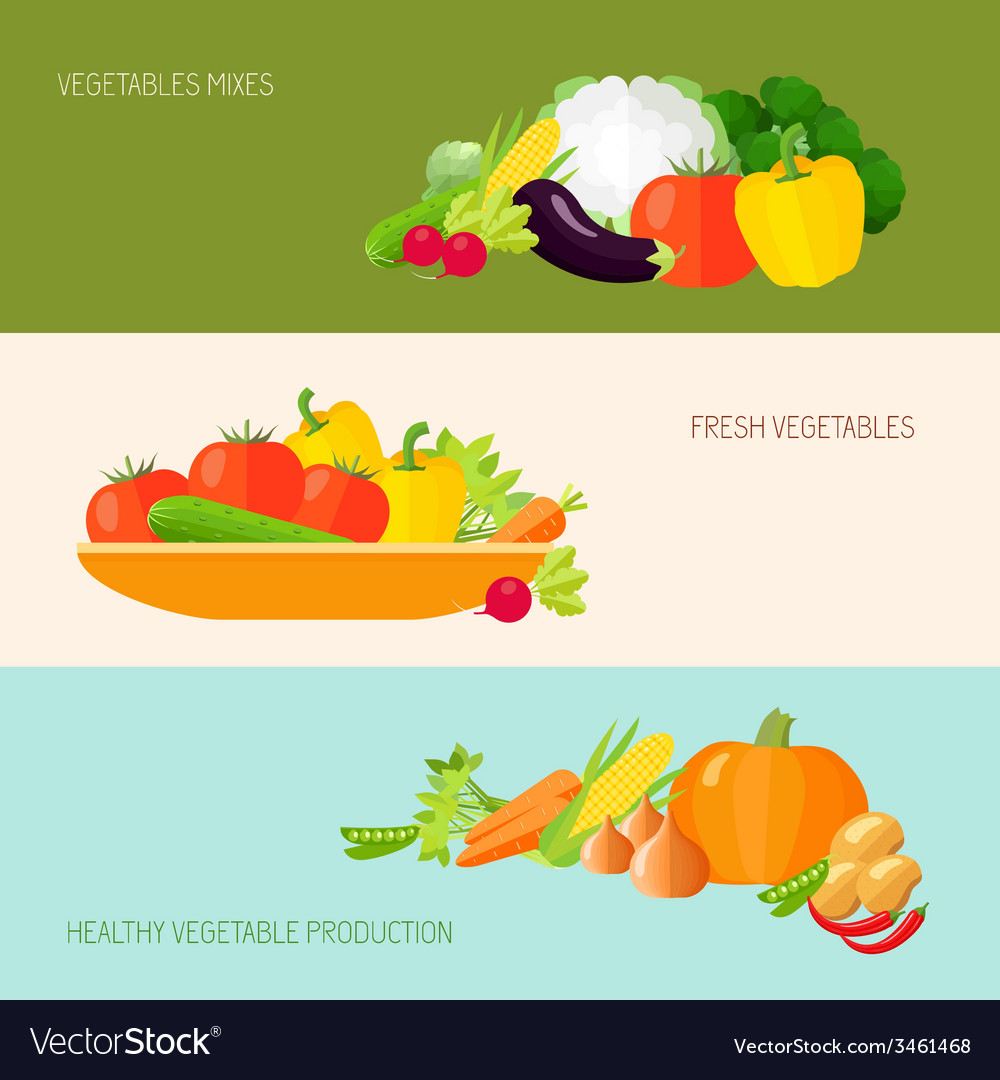 Vegetables banner set vector | Price: 1 Credit (USD $1)