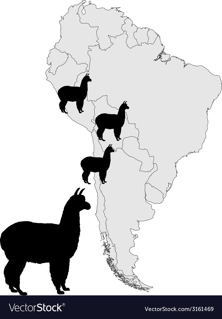 Alpaca range map vector | Price: 1 Credit (USD $1)