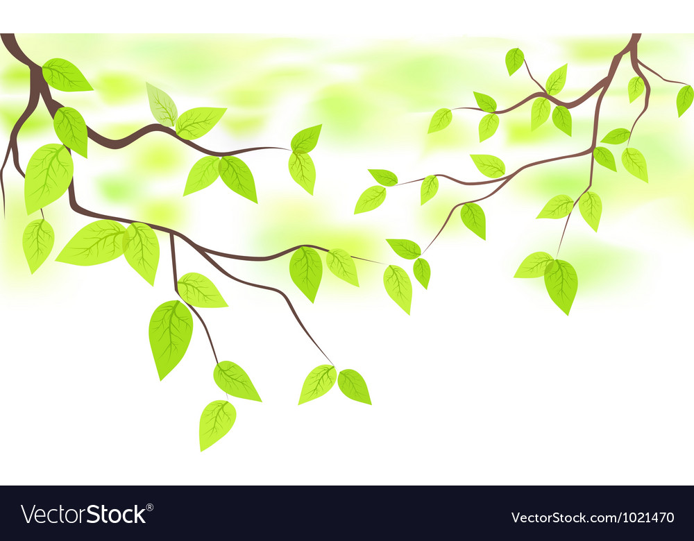 Green leaves with copy space vector | Price: 1 Credit (USD $1)