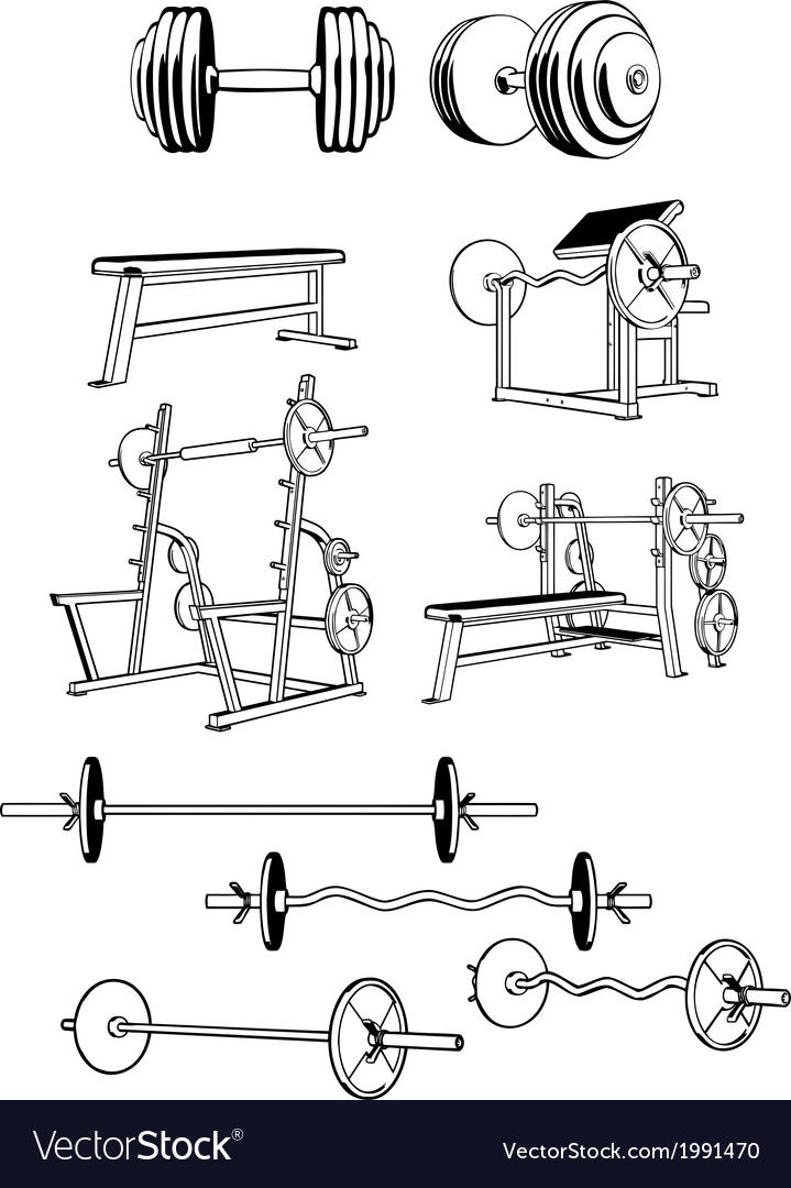 Gym set vector | Price: 1 Credit (USD $1)