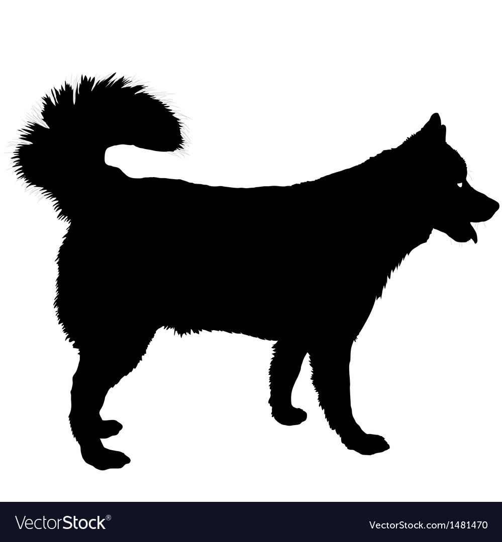 Husky silhouette vector | Price: 1 Credit (USD $1)
