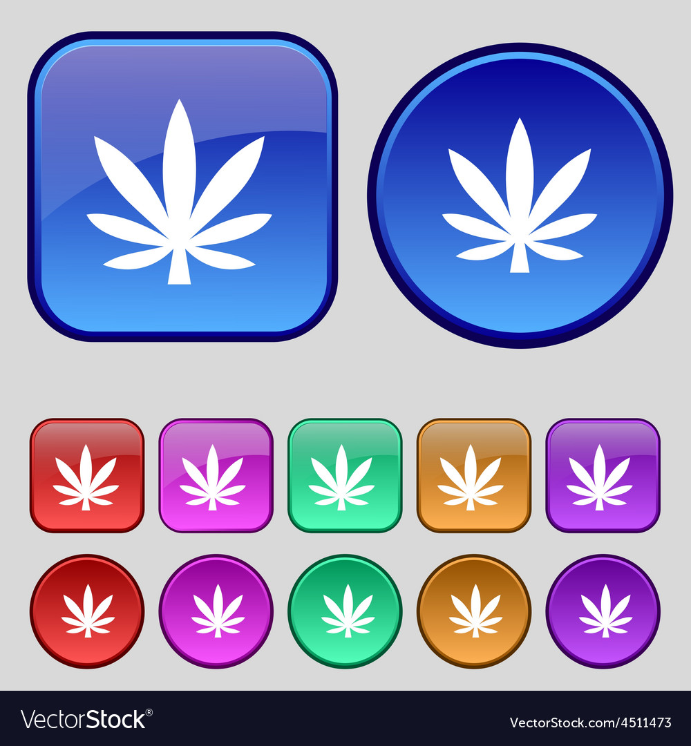 Cannabis leaf icon sign a set of twelve vintage vector | Price: 1 Credit (USD $1)