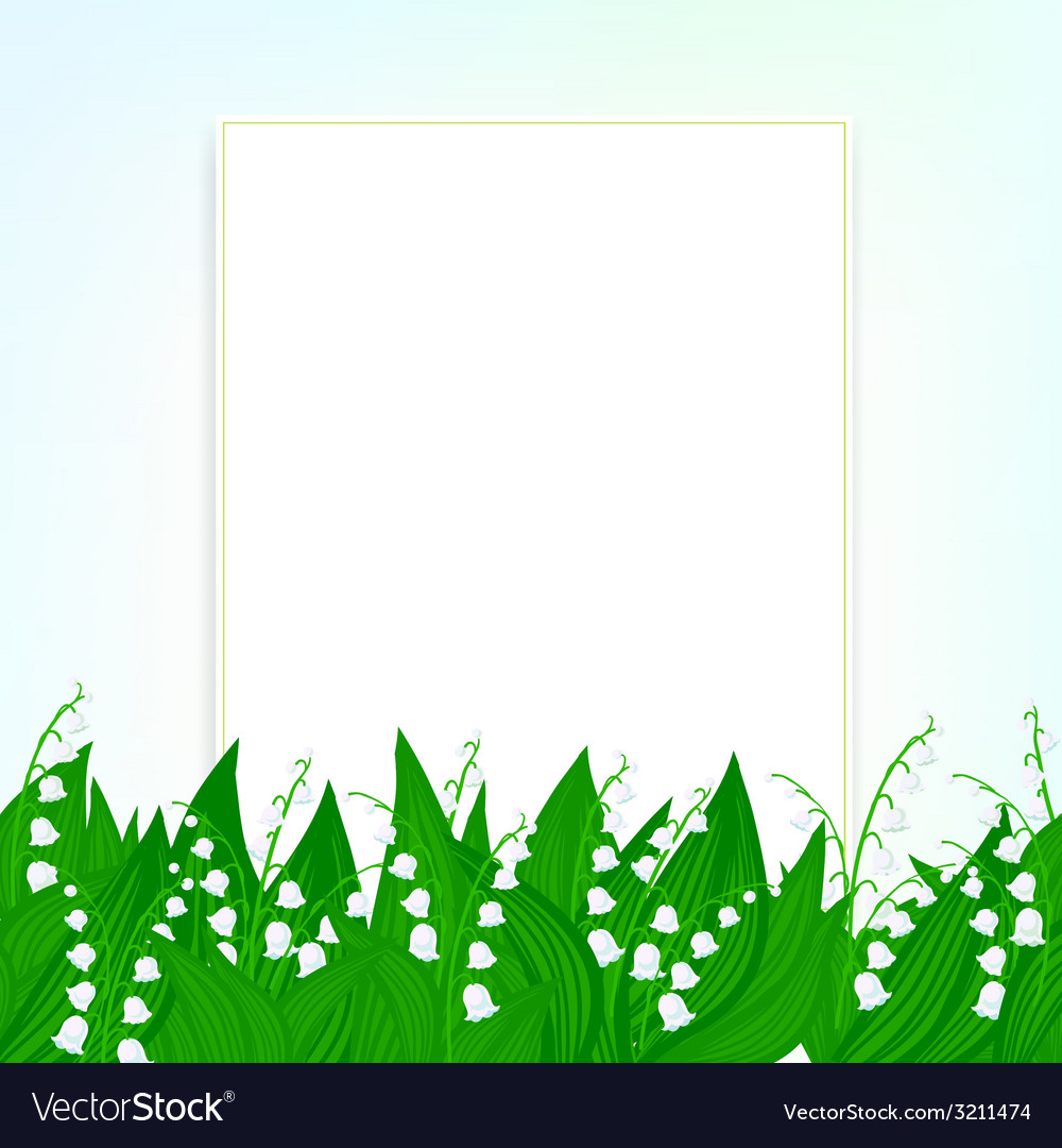 Spring card background with lily of the valley vector | Price: 1 Credit (USD $1)